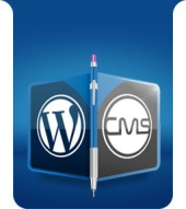 Wordpress CMS Development